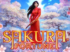 Sakura Fortune Pin Up